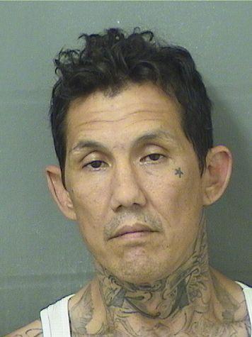 MICHELANGELO JR TROPEANO Resultados de la busqueda para Palm Beach County Florida para  MICHELANGELO JR TROPEANO