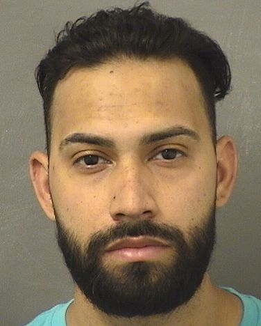 ANIEL MONCIBAEZ Results from Palm Beach County Florida for  ANIEL MONCIBAEZ