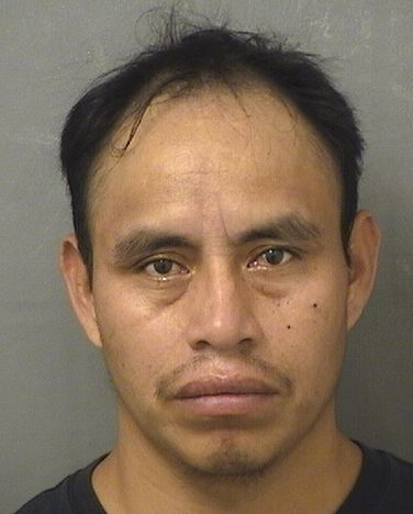HECTOR LOPEZ CHILEL Results from Palm Beach County Florida for  HECTOR LOPEZ CHILEL