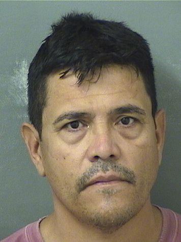 DAVID TAPIA Resultados de la busqueda para Palm Beach County Florida para  DAVID TAPIA