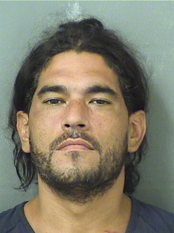 ALFREDO M APONTE Results from Palm Beach County Florida for  ALFREDO M APONTE