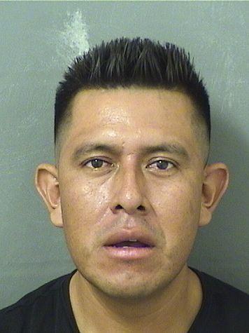 JOSE ANTONIO CHAY Results from Palm Beach County Florida for  JOSE ANTONIO CHAY